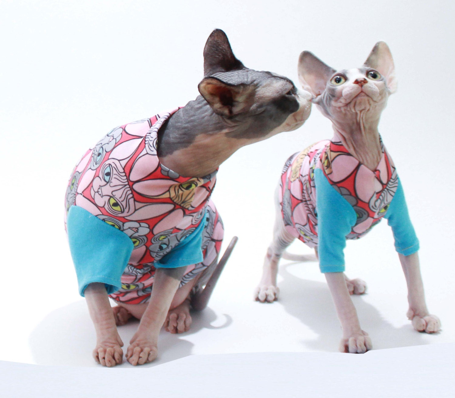 sphynx cat clothes hearts t shirt sleeve cat sweater