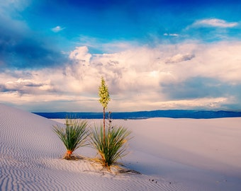 White Sands Summer Monsoon Storm National Park New Mexico landscape Photography Fine Art Print
