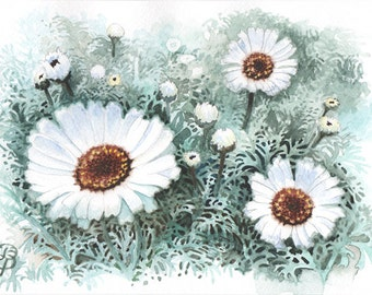 White Daisy, ORIGINAL watercolor painting, FREE shipping