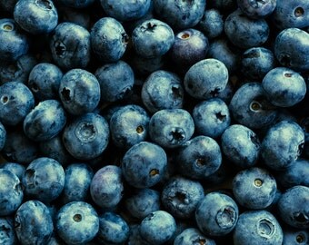 Blueberries, Food Photography, Large Wall Art, Photo Print, Kitchen Decor, Home Decor, Dining Room Decor, Fruit Photography, Blue Black