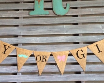 Gender Reveal Banner, Gender Reveal Burlap Banner, Gender Reveal Party, Boy or Girl Burlap Banner, Boy or Girl Banner, Boy or Girl
