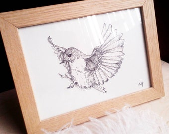 Cute Bird drawing