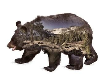 "Black Bear Animal with Lake Tahoe Modern Nature Mountain Scene Double Exposure Art 16x20"" on Metal Aluminum - Made in USA"