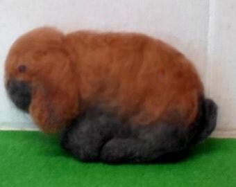 Dwarf/Mini  Lop rabbit. needle felt