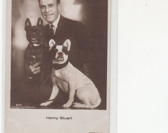 Two French Bulldogs With British Celebrity Henry Stuart Dog Postcard