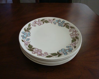 Taylor Smith & Taylor Concord Mid Century Dinner Plates!