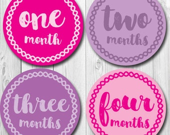 Pink and Purple Baby Monthly Stickers,  Baby Girl Monthly, Months 1-12, Trendy, Preppy Photo Monthly Stickers, Milestone Labels