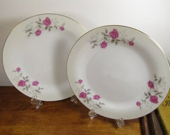 Small Salad Plates - Pink Rose and Gray Leaf Pattern - Set of Two (2)