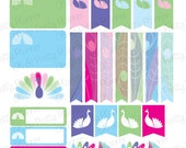 Peacock Sticker Set for your Planner