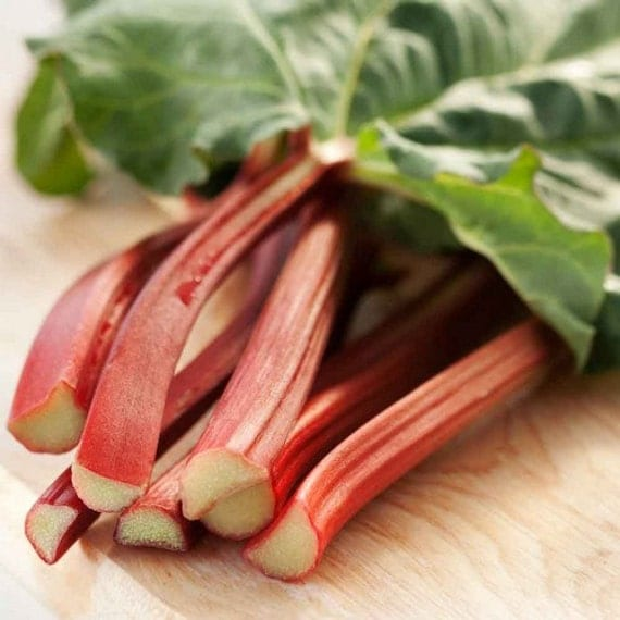 Rhubarb Victoria Vegetable Seeds (Rheum rhabarbarum) 25+Seeds