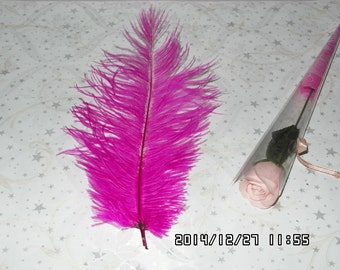 50pcs pink  ostrich feather for wedding table centerpiece