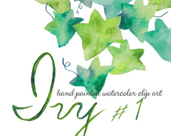 Watercolor Clipart Ivy #1/Hand Painted Watercolor Clipart