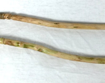 Witch's Spell Wand