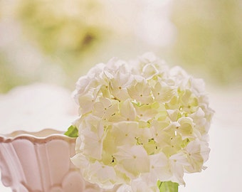 White Hydrangea in white vase, shabby chic style, Vintage, Fine art photography