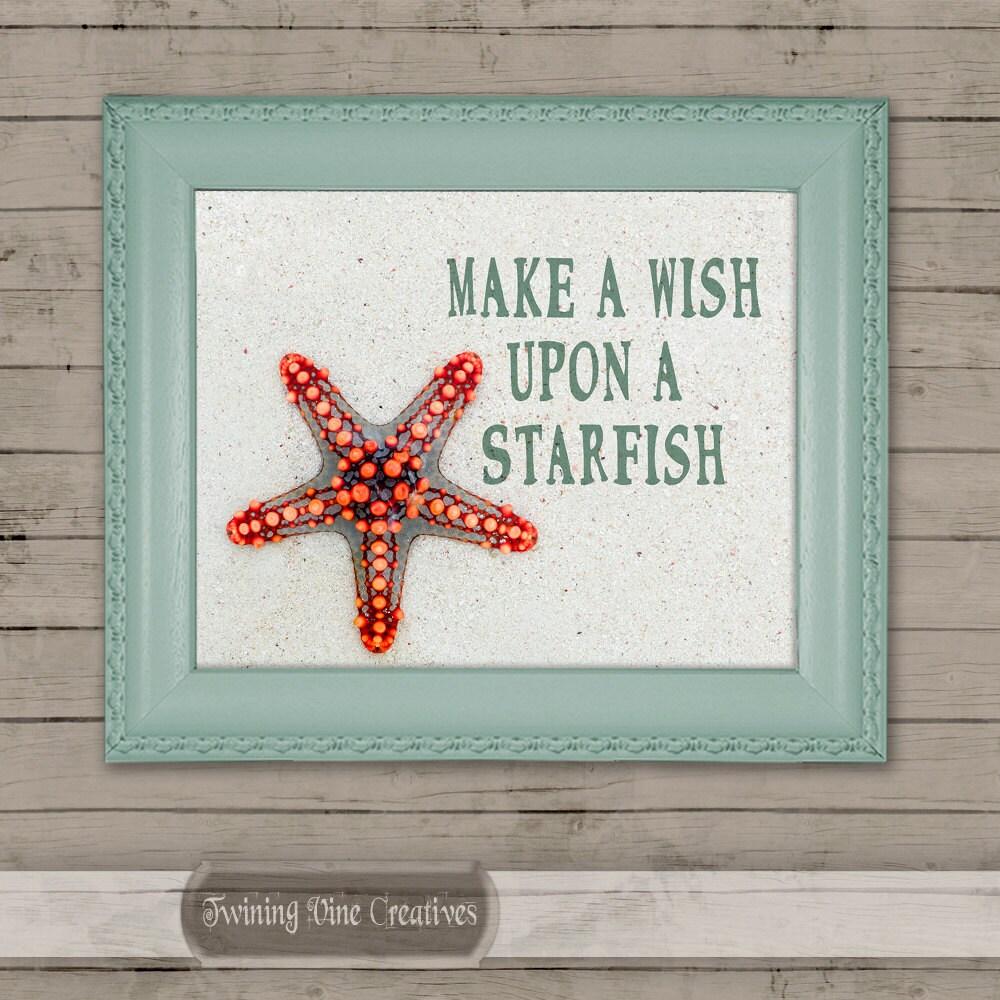 Bulk Starfish Decorations Starfish Art Etsy