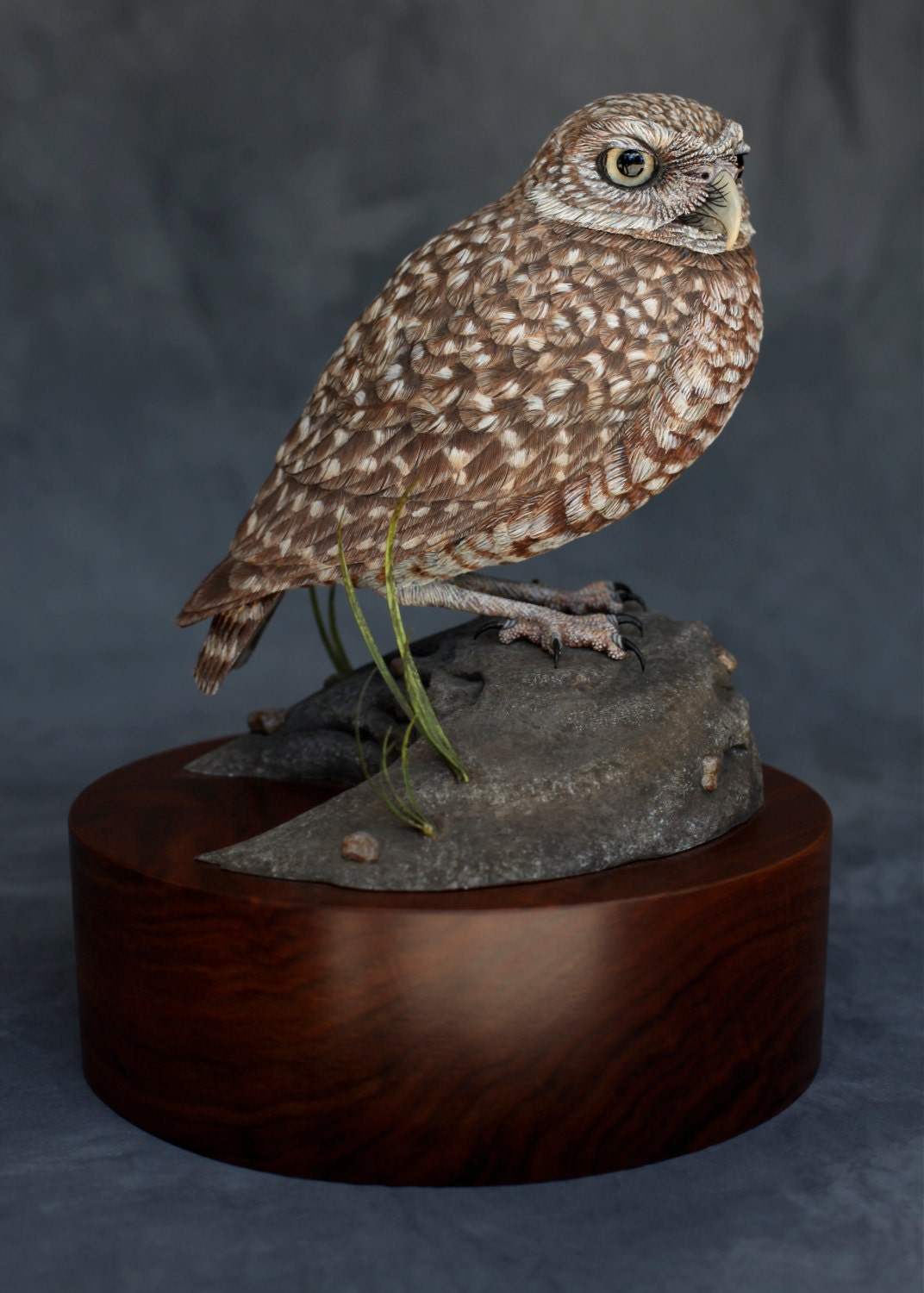 Burrowing owl bird wood carving handmade
