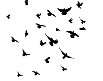 "12/12"" Birds in flight stencil."