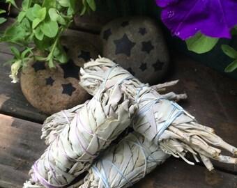 White Sage Smudge Sticks ~ One (1) Stick