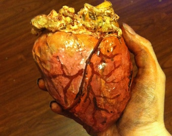 Realistic Bloody Human Heart Prop
