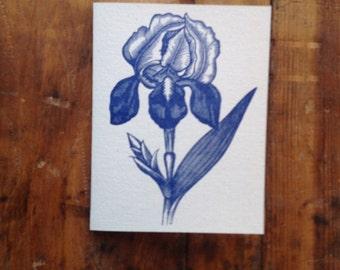 Bearded Iris letterpress card hand printed blank recycled card