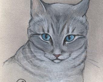 Siamese mix cat art print, tabby point