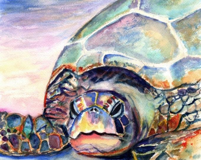 Turtle at Poipu Beach print 8x10 from Kauai Hawaii by Marionette honu Hawaiian ocean