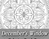 Printable Coloring Book Page for Adults - December Stained Glass Mandala with Holly and Narcissus in Art Nouveau Style Line Art