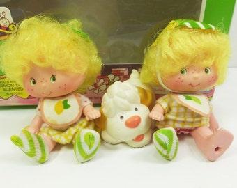 Lem and Ada with Sugar Woofer, Strawberry Shortcake Friend Doll in Original Box, 1983 Kenner