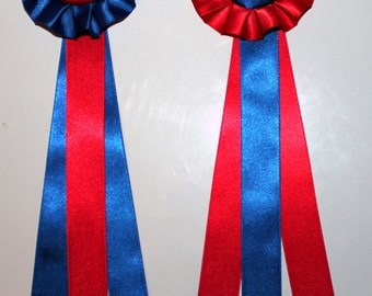 2 Large Model Horse Rosettes, 10 inches, Blue and Red Colors, Set of 2 Awards