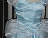Classic Cinderella Princess Costume Gown Dress and Choker for Girls