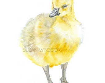 Gosling Watercolor Painting Giclee Print 8 x 10 Fine Art Nursery Print - 8.5x11 - Baby Goose - Canadian Geese