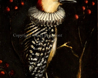 "Woodpecker ""Ruby Emperor"" -  ACEO LE"