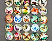 12mm 20mm 25mm Mixed Dome Round Butterfly Nature Glass Cameo Cabochons 10/20/50pcs