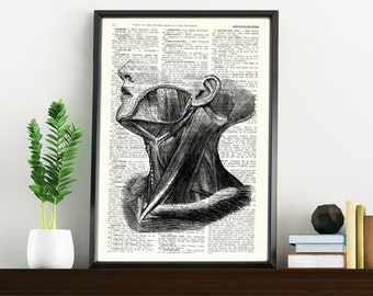 Summer Sale Upcycled Dictionary PageNeck Muscles Anatomy Print on Vintage Book altered art dictionary page SKA044