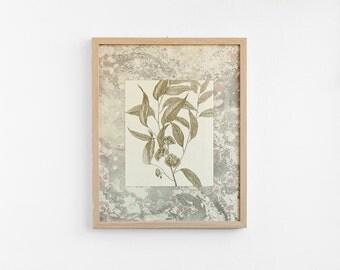SALE -30% Eucalyptus Marbled - Poster - 40cm x 50cm EM4050