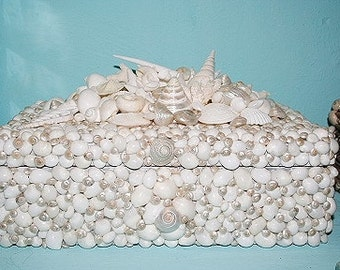 Sea Shell  Encrusted Wine Box....inspired by VIZCAYA MUSEUM GARDENS Grottoes