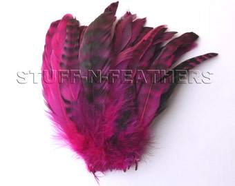 Rooster feather SALE Fuchsia chinchilla rooster tail, pink black coque feathers strung real feather millinery, crafts / 5-8 in long / F159-6