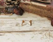 Twin Peaks Wooden Earrings