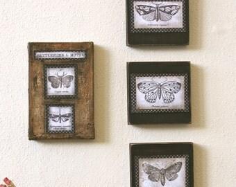 Set of 3 Butterfly Moth Original Art Decoupage on Wood Blocks