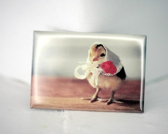 Chick Wearing A Kerchief Hat Rigid Rectangle Photo Magnet Chicken Hats