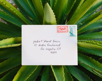 Calligraphy Addressed Envelopes | Invitation | Wedding | Modern Calligraphy