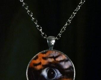"Peregrine Falcon Fetish NECKLACE - ""Falcon's  Eye"""