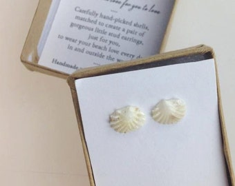 Rare Shell Earrings in White Venus Shell | Handpicked and Handmade