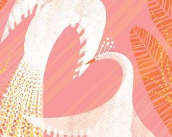 Love Birds // A6 blank greeting card