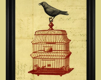 Beautiful Birdcage Illustration, Black Crow on Red Birdcage Poster, Boutique Art Print  - 8 x 10