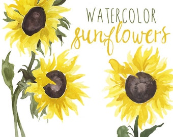 Watercolor Sunflower Clip Art, Floral Summer Clipart, Sunflowers Floral Illustration, Bright Summery Clip Art, Yellow Flower clipart, Sun