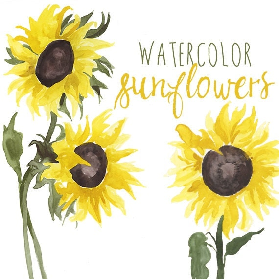 Watercolor Sunflower Clip Art Floral Summer Clipart