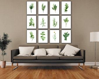 basilic persil sauge etsy. Black Bedroom Furniture Sets. Home Design Ideas