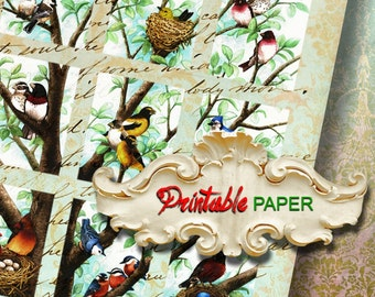 BIRDs TREE  - Printable wrapping paper for Scrapbooking, Creat - Download and Print