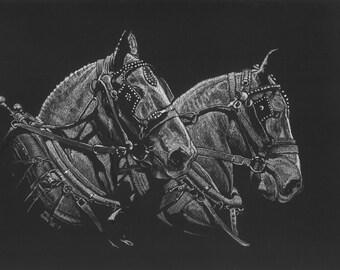 Original Draft Horse Scratchboard